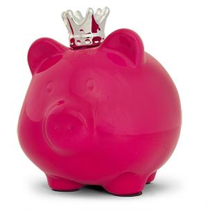 Succesfactoren Motio budget en advies